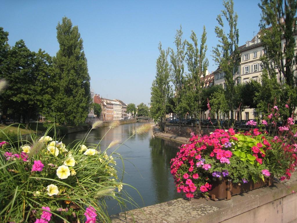 Division leclerc jardins d 39 alsace - Les jardins d alsace ...