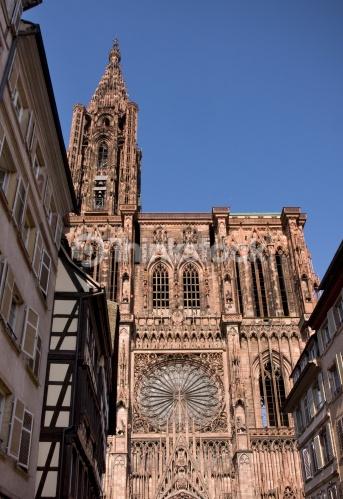 cathedrale-strasbourg - Jardins d'Alsace